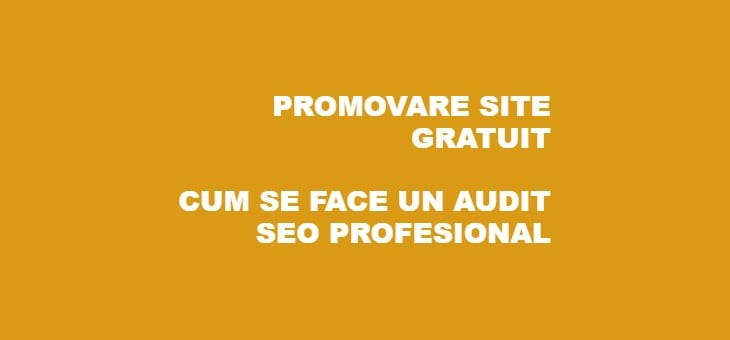 Audit SEO Complet Profesional