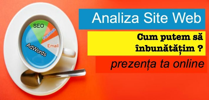 Analiza site web